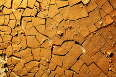 Dried cracked earth. Background or texture stock images