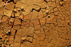 Dried cracked earth Royalty Free Stock Photography