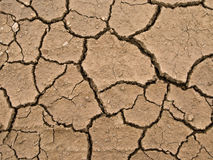 Dried and cracked earth Royalty Free Stock Photography