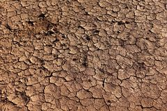 Dried cracked earth. Background of dried cracked earth stock photos