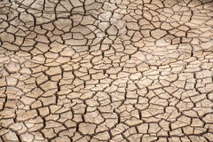 Dried and cracked earth Royalty Free Stock Photo