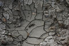 Dried and Cracked Earth/Mud and Print stock photography
