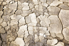 Dried cracked earth soil background Royalty Free Stock Image