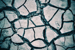Dried cracked earth soil Stock Photo