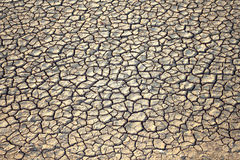 Dried cracked earth soil ground background Stock Photo