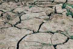 Dried cracked earth soil ground. Texture background stock photography