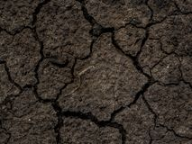 Dried cracked earth soil ground texture background.Crack soil on Stock Photos