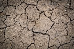 Dried cracked earth soil ground texture background.Crack soil on Stock Images