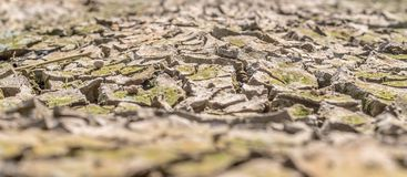 Dried cracked earth soil ground texture background. Crack soil on dry season, Global worming effect royalty free stock photography