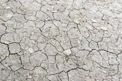 Dried cracked earth soil ground texture background. Dried cracked earth soil ground texture background royalty free stock images