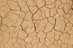 Dried cracked earth soil ground texture background. Stock Images