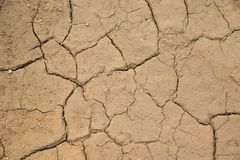 Dried cracked earth soil ground texture background. Royalty Free Stock Photos