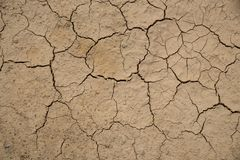 Dried cracked earth soil ground texture background. Stock Photos
