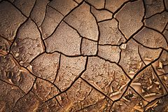 Dried cracked earth soil ground texture background. Mosaic pattern of sunny dried earth soil stock images