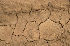 Dried cracked earth soil ground texture background. Mosaic pattern of sunny dried earth soil Stock Photography