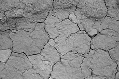 Dried cracked earth soil ground texture background. Royalty Free Stock Photo