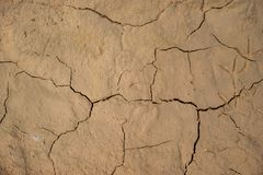 Dried cracked earth soil ground texture background. Royalty Free Stock Images