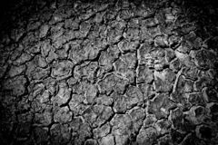 Dried cracked earth soil ground texture. Background stock photo
