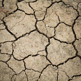 Dried cracked earth soil Stock Image