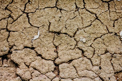 Dried and Cracked Earth Royalty Free Stock Photos