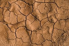 Dried and cracked ground Stock Image