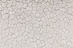 Dried and Cracked ground Royalty Free Stock Image