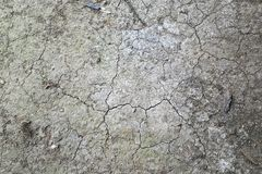 Dried and Cracked ground. Background royalty free stock image
