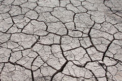 Dried and cracked ground Royalty Free Stock Photo