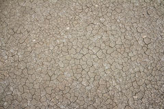 Dried and Cracked ground Stock Images