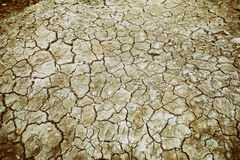 Dried and cracked ground soil texture Stock Images