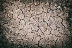 Dried and cracked ground soil texture Royalty Free Stock Images