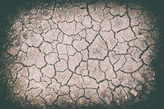 Dried and cracked ground soil texture Royalty Free Stock Image