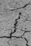 Dried and cracked ground Stock Photography