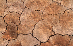 Dried and cracked ground Royalty Free Stock Photography