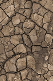 Dried cracked mud Royalty Free Stock Photos