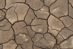 Dried cracked mud Stock Image