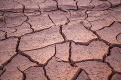 Dried and cracked mud close up in thailand Stock Photography