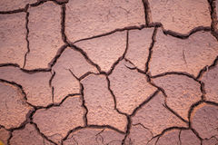Dried and cracked mud close up in thailand Stock Photo