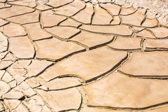Dried and cracked mud in the near of a dried up creek Royalty Free Stock Photography