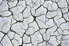 Dried and cracked river bed. Dried and cracked clay of a river bed Royalty Free Stock Photo
