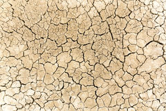 Dried and cracked sandy soil Stock Photography