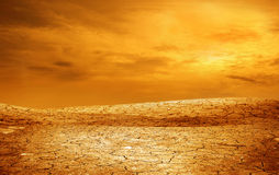 Dried and cracked soil Stock Photography