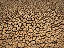 Dried and cracked soil. Stock Image