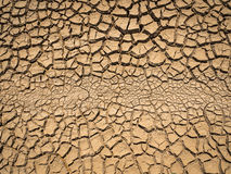 Dried and cracked soil. Royalty Free Stock Image