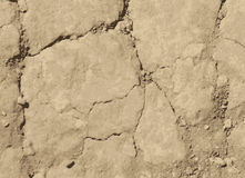 Dried cracked soil. Vector texture Royalty Free Stock Image