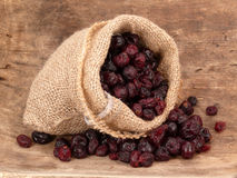 Dried cranberries Royalty Free Stock Images