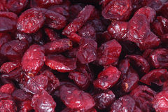 Dried Cranberries Stock Photography