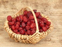 Dried cranberries in the basket Stock Image