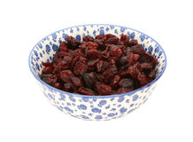 Dried cranberries in a blue and white china bowl Stock Photos