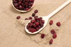 Dried cranberries on canvas close up Royalty Free Stock Photos